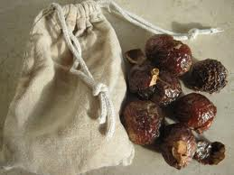 Sapindus mukorossi, aka soapnuts, are now available at Earth Lore. These little guys are part of the lychee family, and also known as soapberries or washnuts. There are several varieties, native to different...